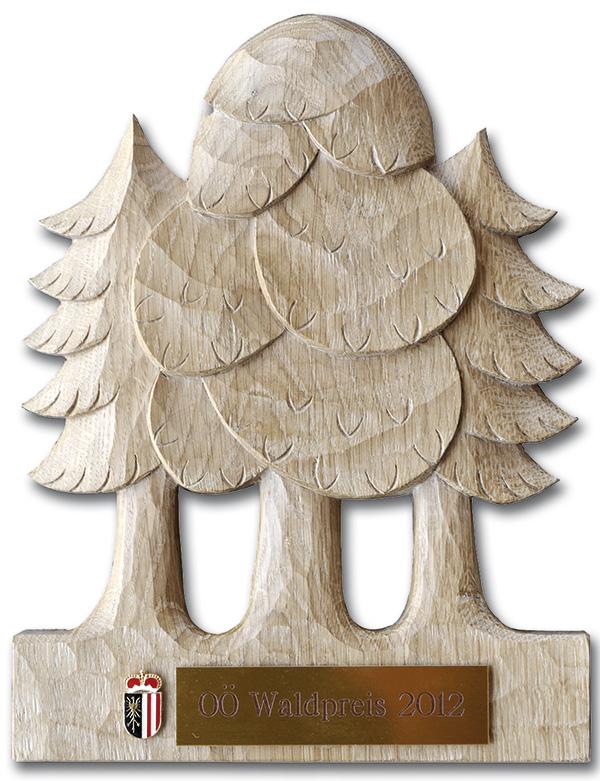 OÖ Waldpreis 2012